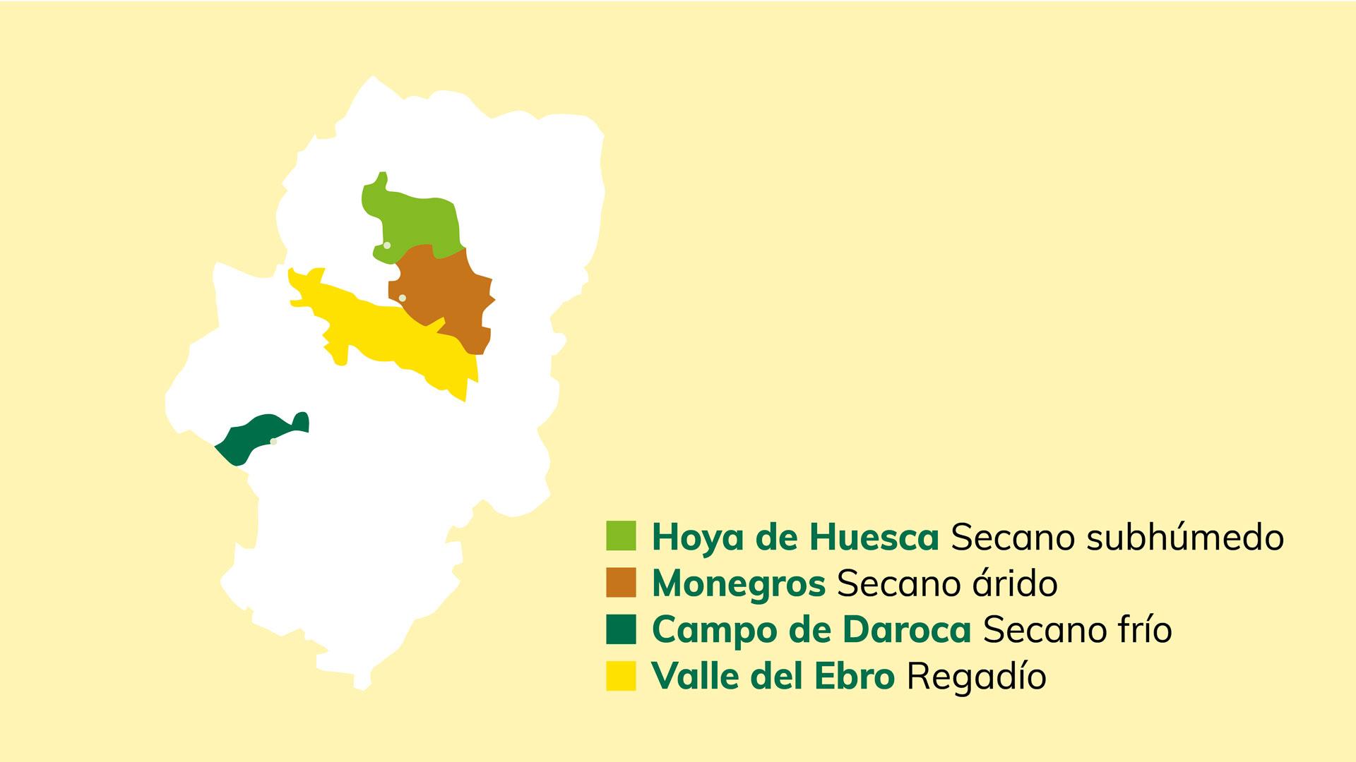 Investigación y desarrollo de semillas de trigo y cebada en Aragón
